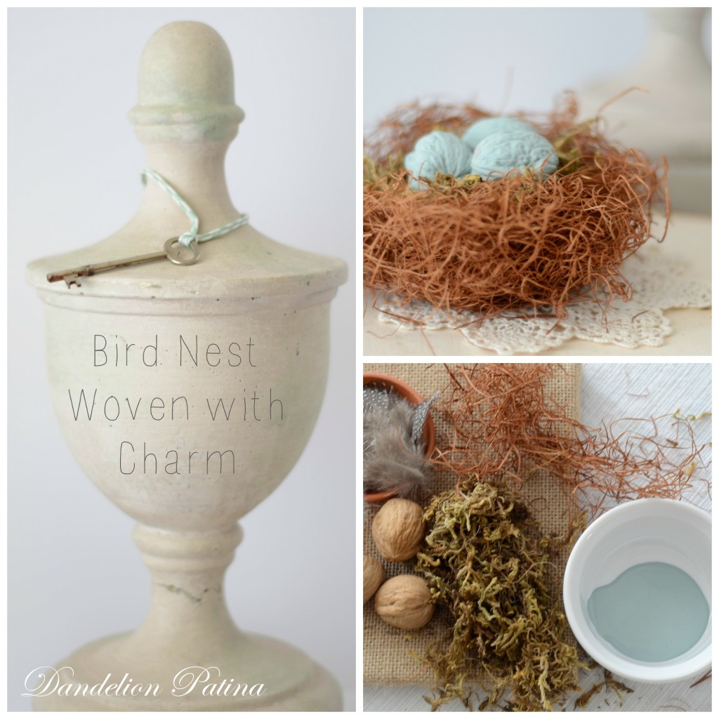 bird nest craft collage