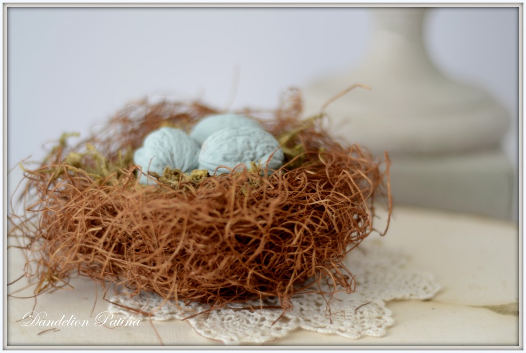bird nest view