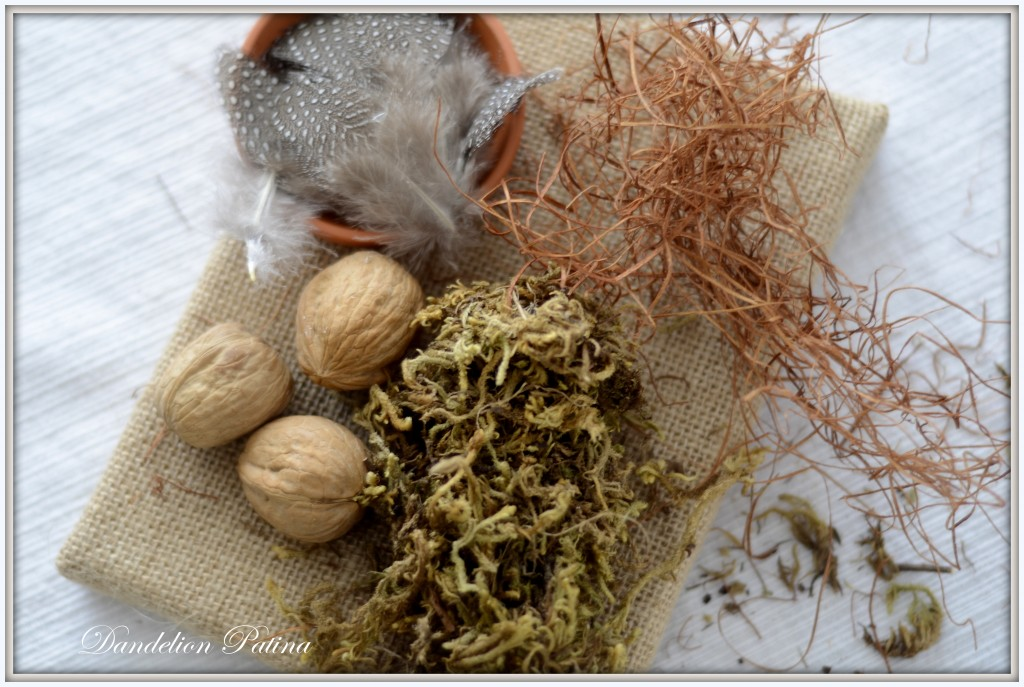 supplies for bird nest
