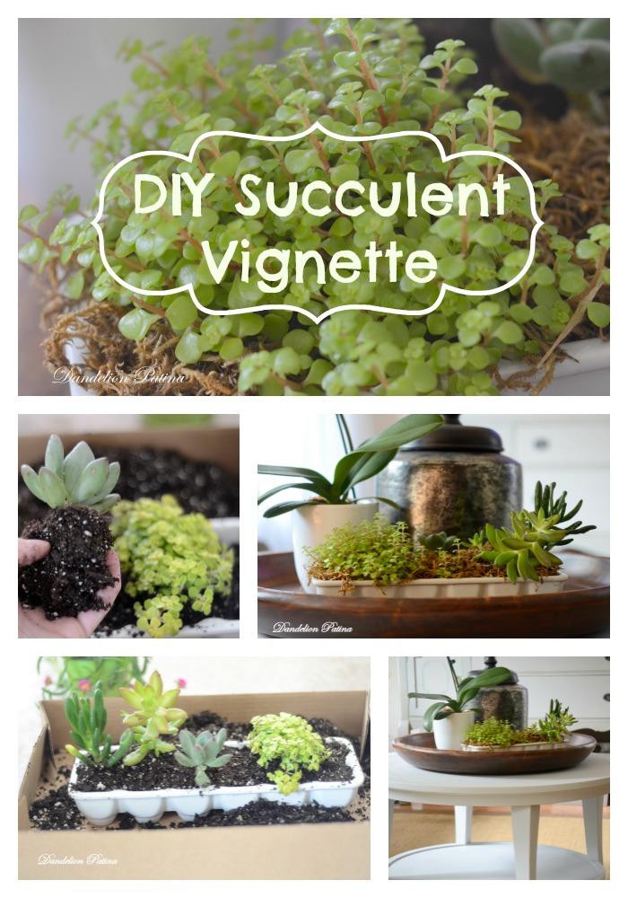 DIY Succulent Vignette by Dandelion Patina