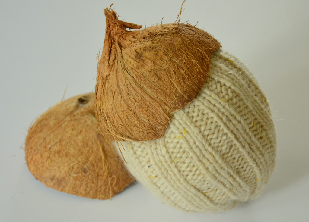 coconutty sweater acorns by dandelion patina