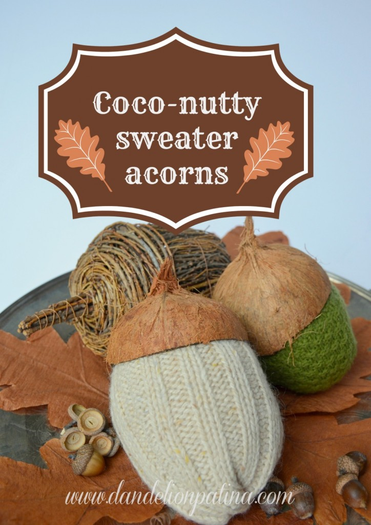 coconutty sweater acorns
