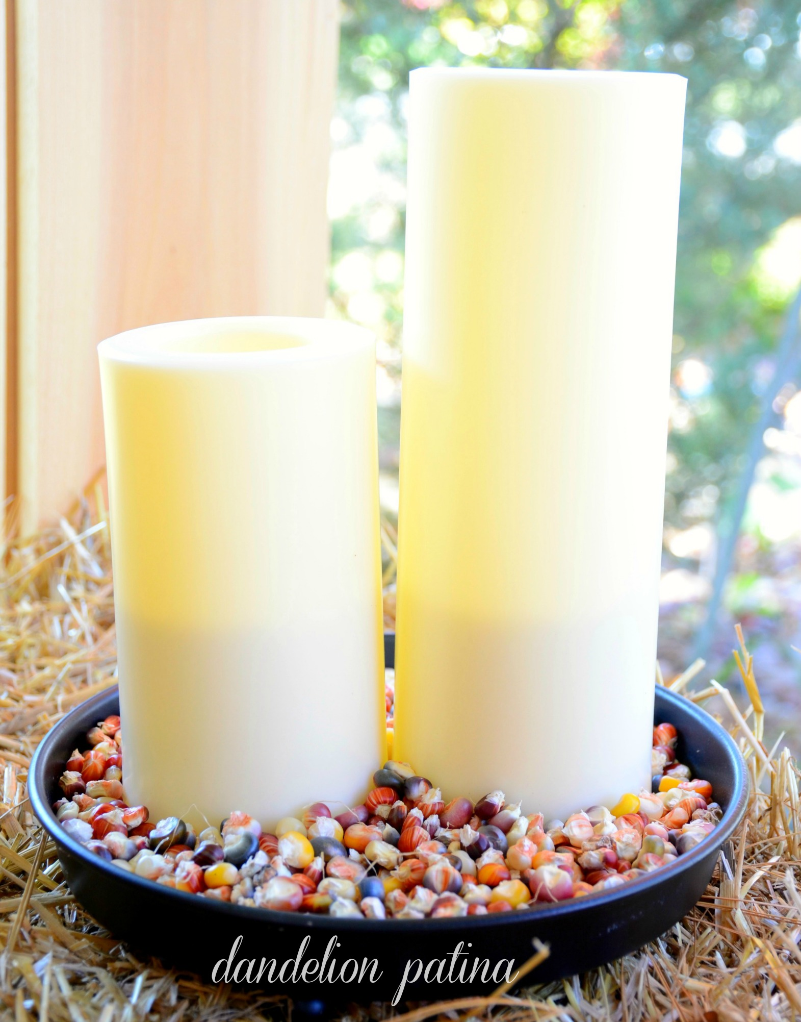 indian corn and candles