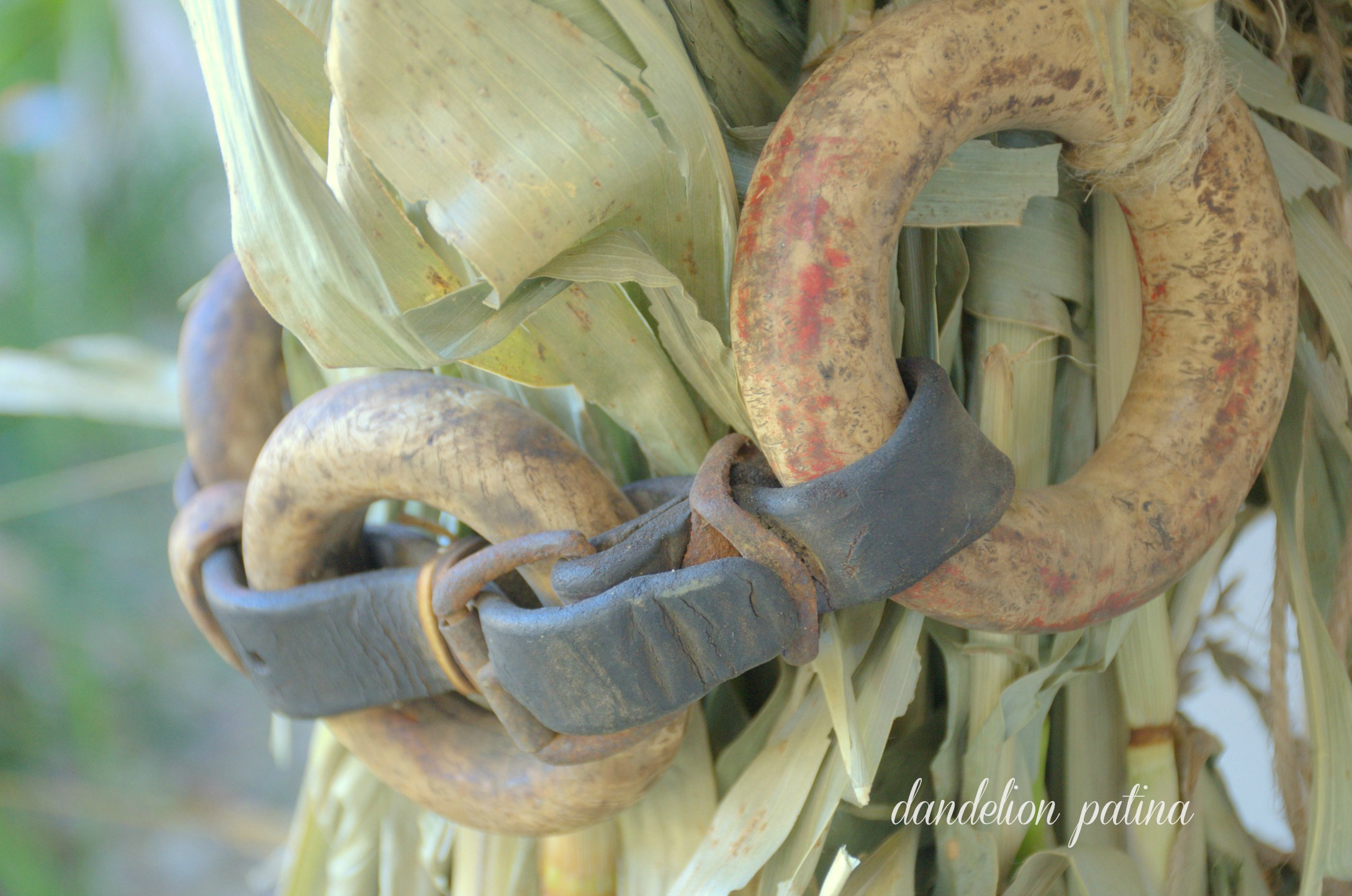 horse reins and corn stalks
