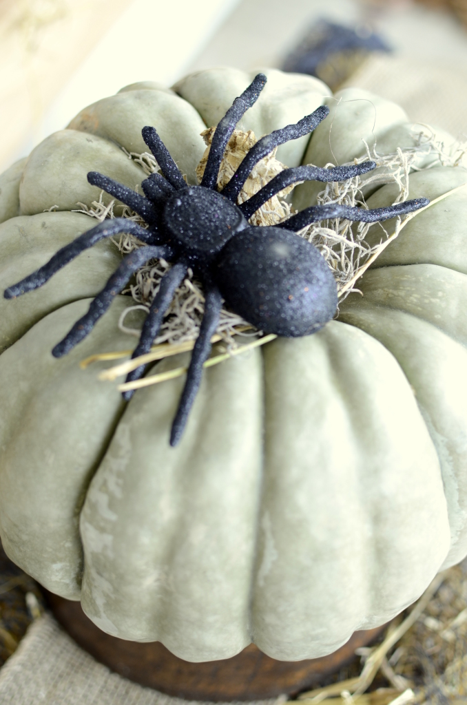 black spider on blue pumpkin
