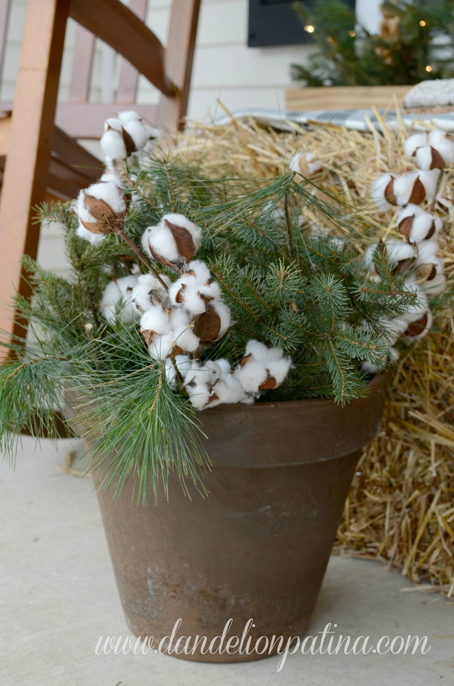 pine greenery and cotton boll
