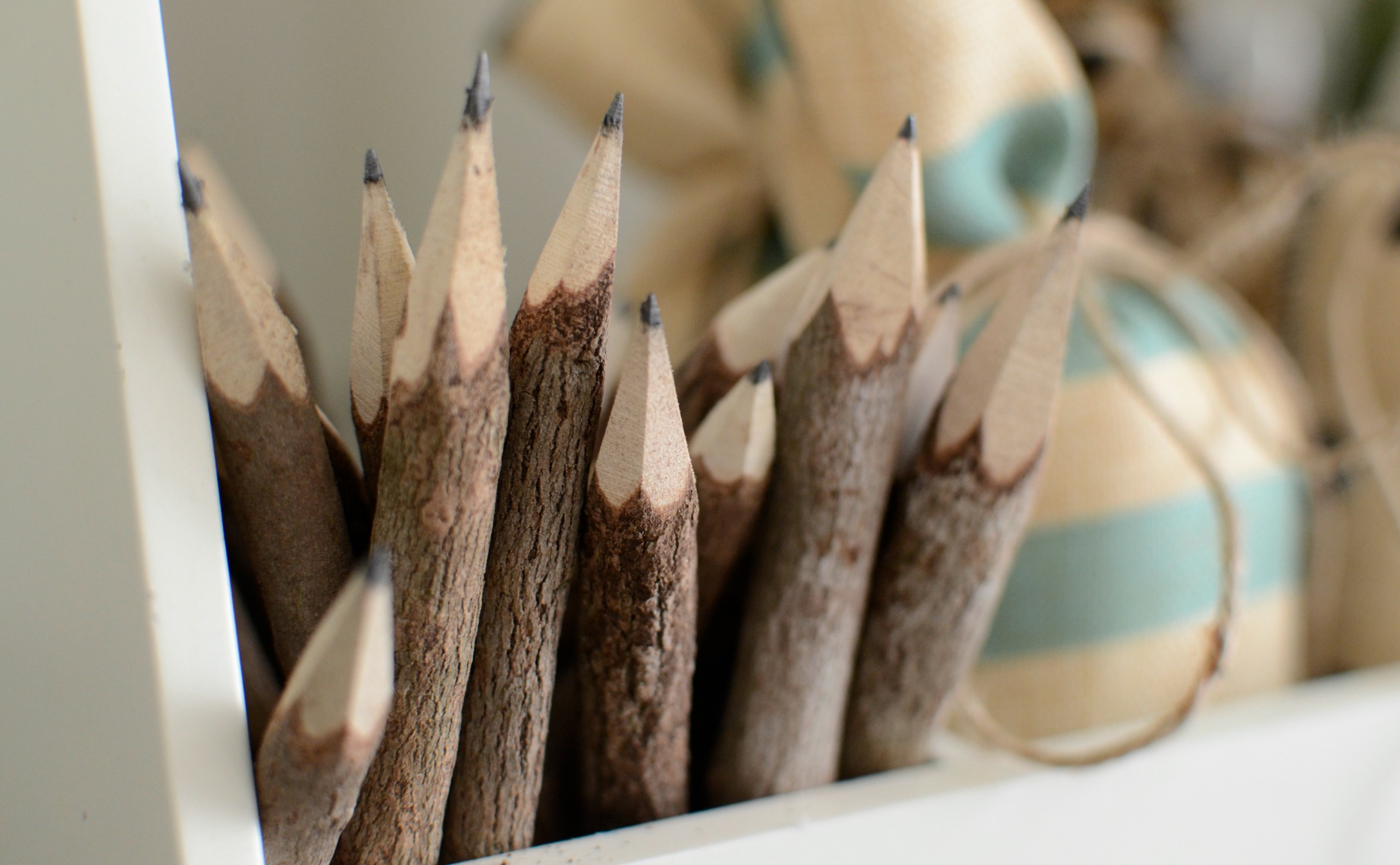 chunky twig pencils with bark