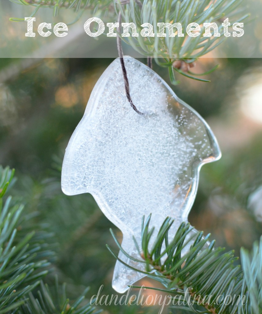 how to make ice ornaments