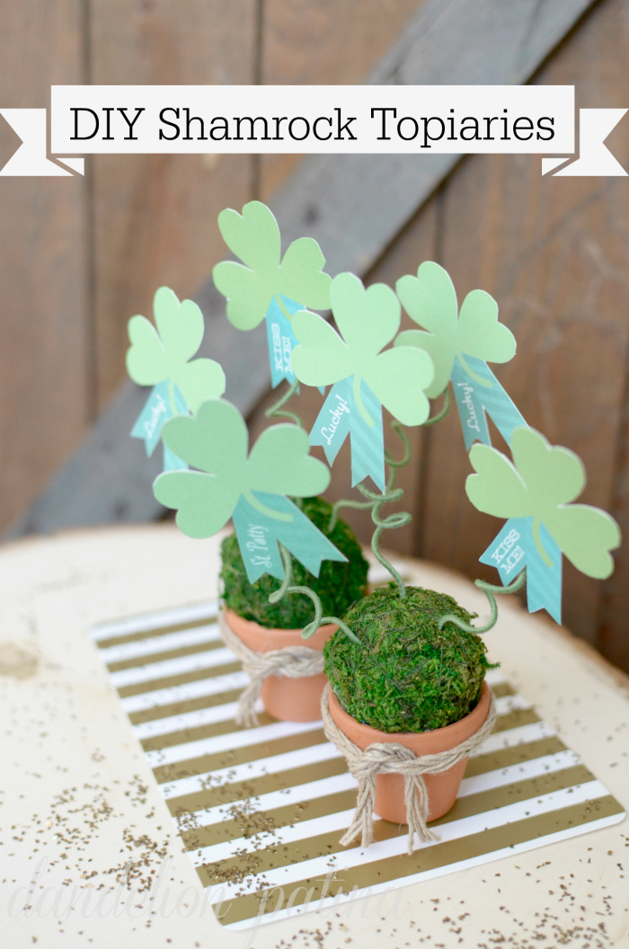 shamrock topiaries DIY