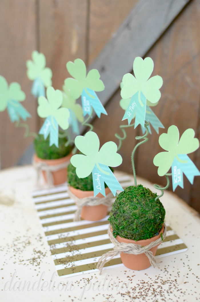 shamrock topiary trio