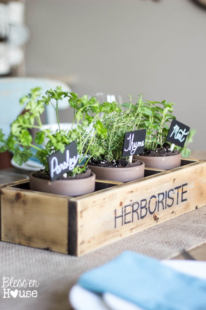 Herboriste repurposed herb planter by blesser house