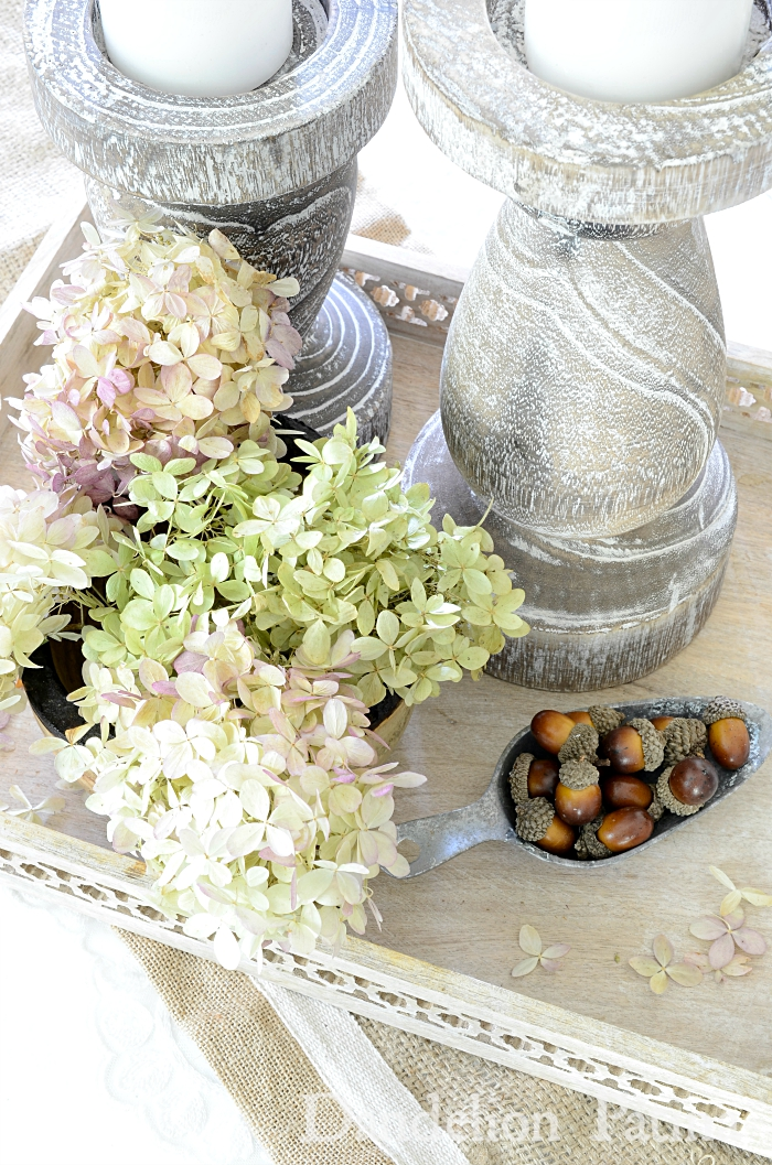 dried hydrangeas and acorns. simple farmhouse style fall decorating via dandelionpatina.com