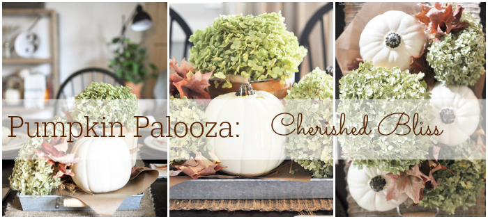 Pumpkin Palooza Cherished Bliss
