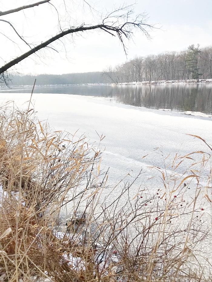 combat the winter blues winter walk